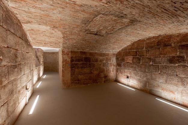 Ancient underground cellars of a castle Premium Photo