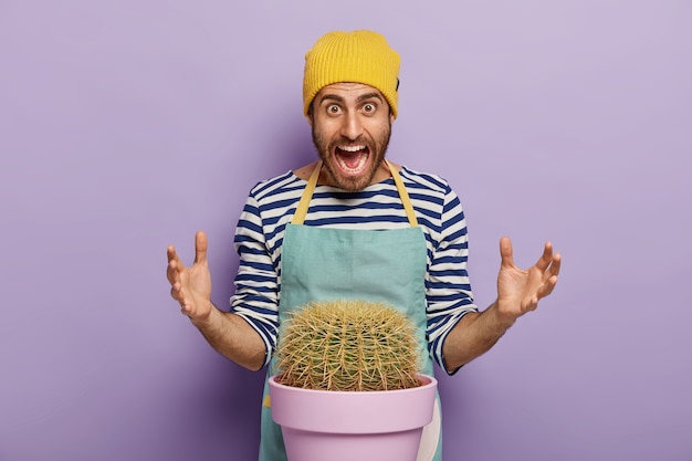 Annoyed emotional male botanist gestures actively, screams out loudly, wears yellow hat, striped jumper and apron, poses near succulent green cactus in pot, grows indoor plant for home garden Free Photo
