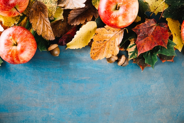 Apples and foliage in arrangement Free Photo
