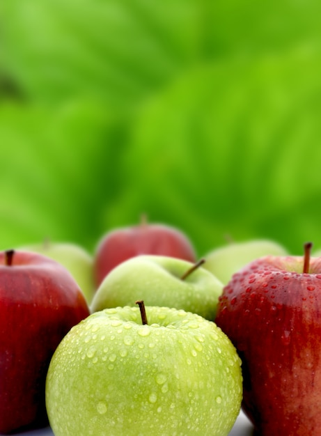 Apples Free Photo
