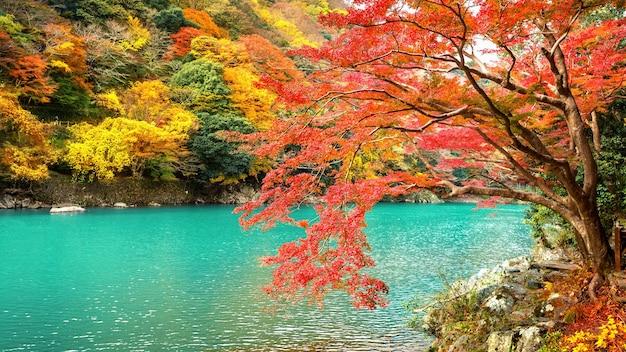 일본 교토의 강을 따라 가을 시즌에 아라시야마. 무료 사진