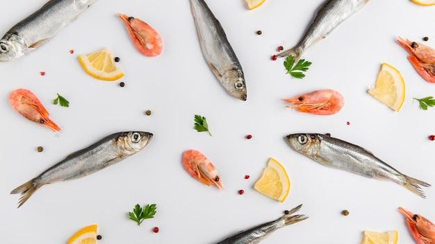 Arrangement of fish and shrimps Free Photo