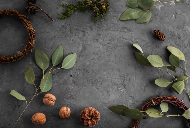 Arrangement of leaves walnuts and pine cones Free Photo