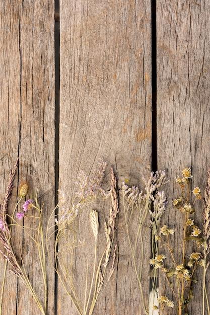 Расположение сухих растений на деревянном фоне с копией пространства Бесплатные Фотографии