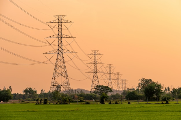 Расположение высоковольтного столба высоковольтной опоры на рисовом поле на закате Premium Фотографии