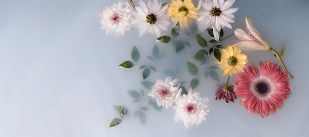 Arrangement of therapeutical flowers Free Photo