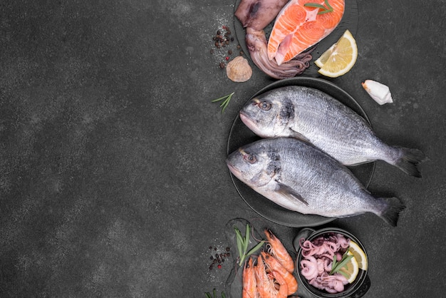 Arrangement of various types of fish flat lay Free Photo