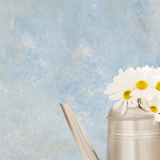 Arrangement with flowers in a watering can Free Photo