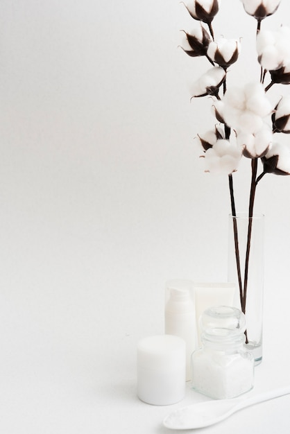 Arrangement with flowers and white background Free Photo