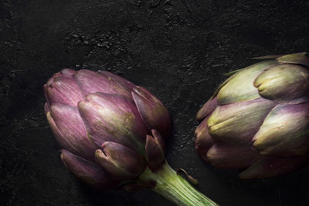 Artichoke plant extreme close up Free Photo