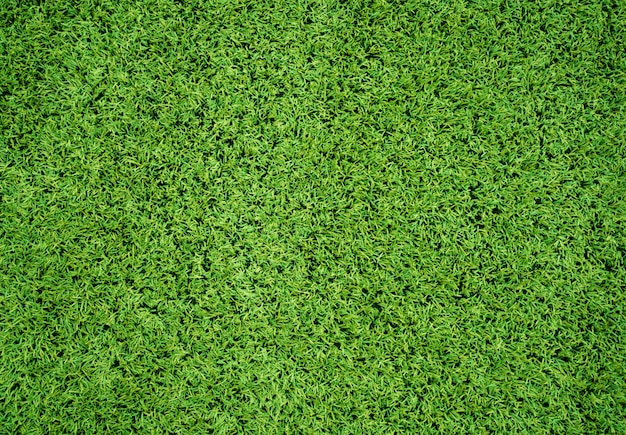 Artificial grass field Premium Photo