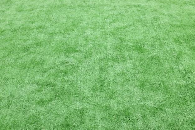 Artificial grass floor Premium Photo