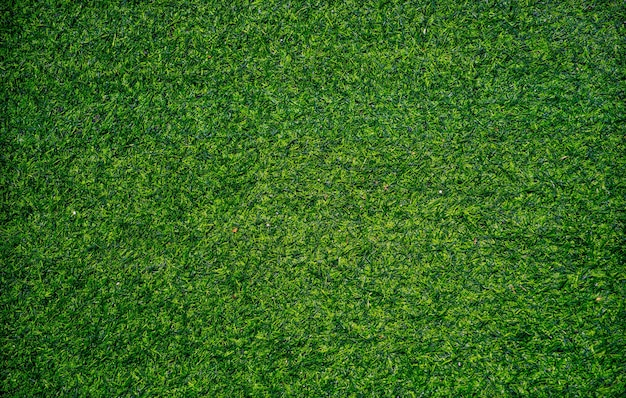 Artificial grass texture, closeup shot. Premium Photo