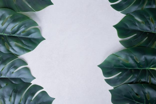 Искусственные зеленые листья фон Бесплатные Фотографии