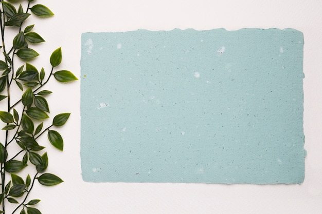 An artificial green plant near the blank blue texture paper on white background Free Photo