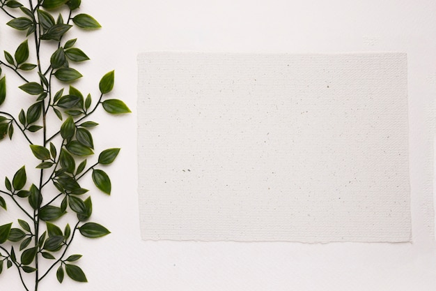 An artificial green plant near the blank paper on white background Free Photo