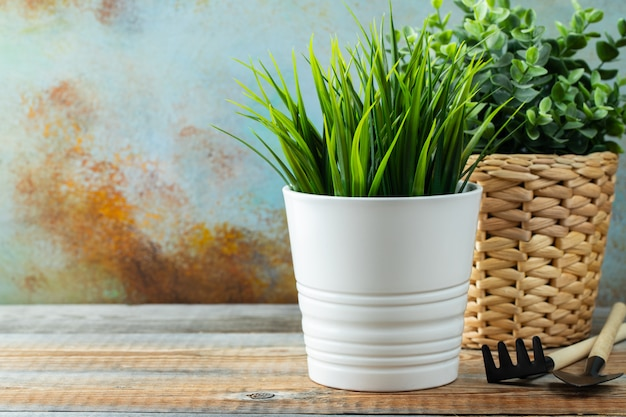 Artificial green plants in a white flower pots. Premium Photo