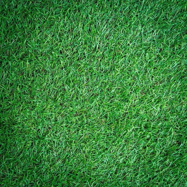 Artificial Turf grass background and texture Photo Premium Download