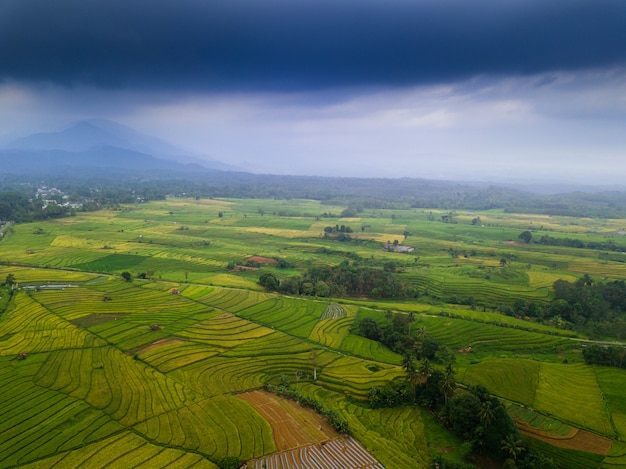 Asia beauty landscape aerial view in the morning indonesia Premium Photo