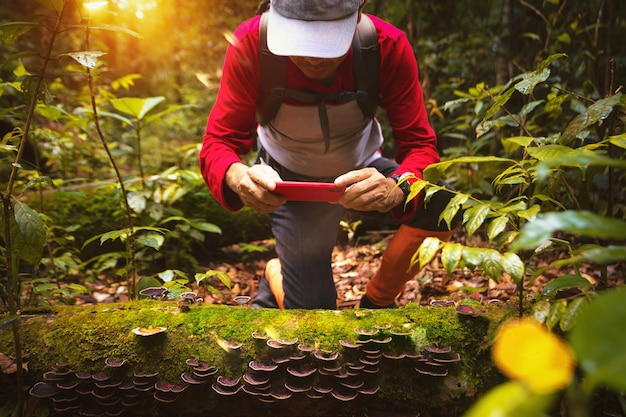 Asian backpacker hiking and taking photo in deep forest in north of thailand Premium Photo