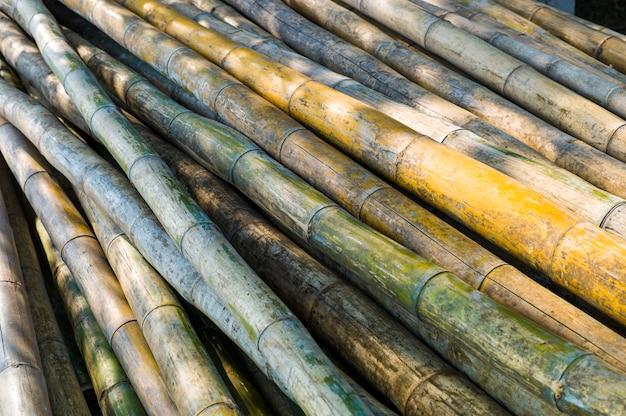 Asian bamboo log Free Photo