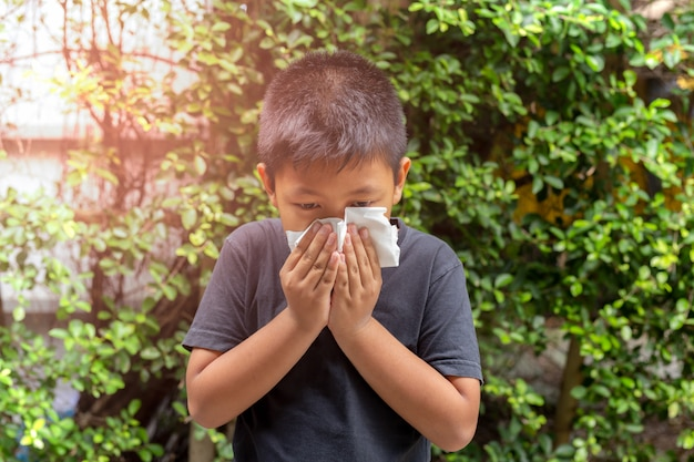 Asian boy blow his nose into with tissue, flu season, hay fever. Premium Photo