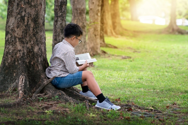 Asian boy sitting by tree trunk in the park and reading book Premium Photo