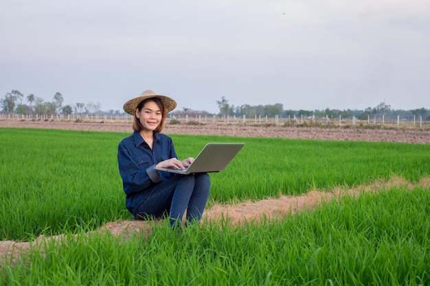 Asian farmer woman wear hat and jean cloth using laptop computer at rice field Premium Photo