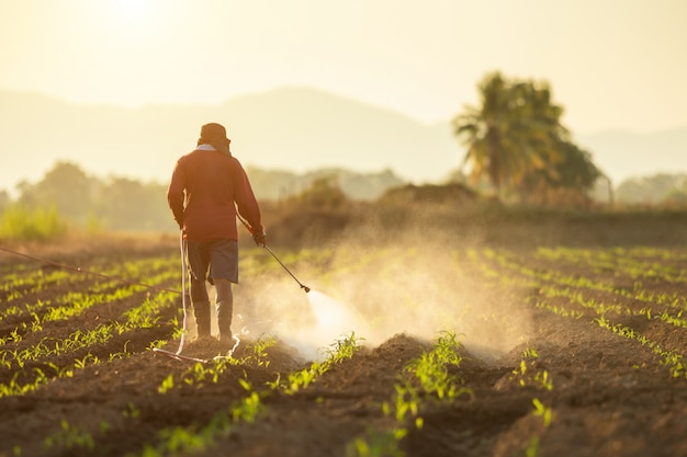 Asian farmer working in the field and spraying chemical Premium Photo