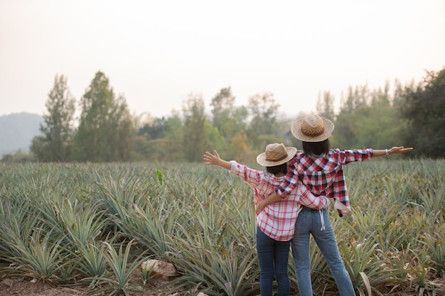 Asian female farmer see growth of pineapple in farm, agricultural industry concept. Free Photo