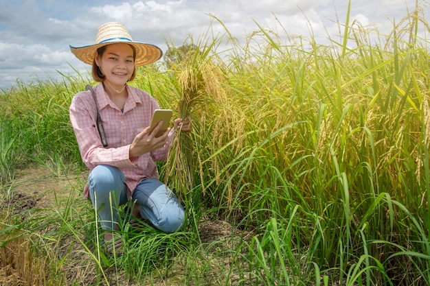 Asian female farmer sitting happily holding golden ears and smartphone Premium Photo