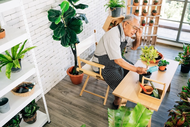 An asian grandfather loves to take care of the plants, adjust eyeglasses to see detail of plants in an indoor garden in the house with happiness. Premium Photo
