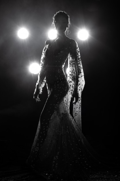 Asian tanned skin slim sexy woman see through evening gown with back light smoke Premium Photo