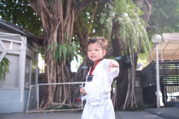 Asian toddler boy child posing in fighting action on nature, taekwondo class for toddler Premium Photo
