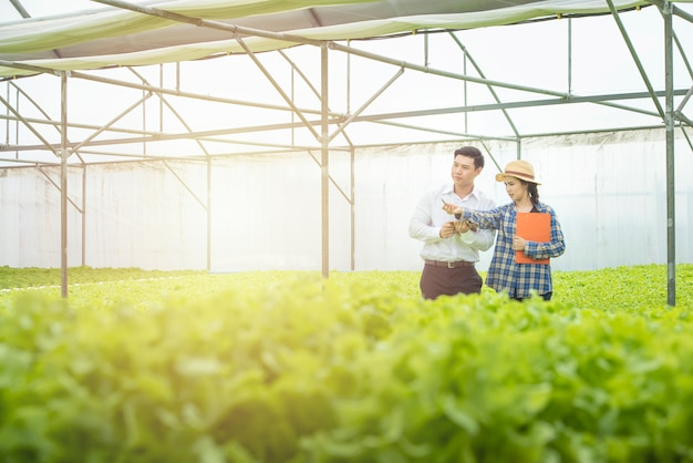 Asian woman farmer hold document files point pen to green lettuce for asian man scientist look come check quality. Premium Photo