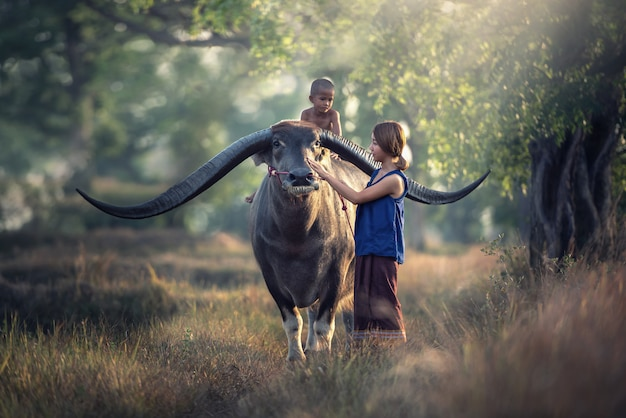 Asian woman farmer with son riding a buffalo in the field countryside of thailand Premium Photo