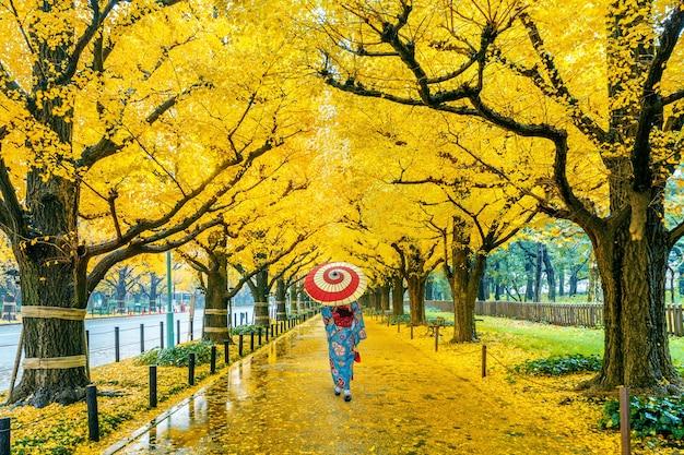 가을 노란 은행 나무의 행에서 일본 전통 기모노를 입고 아시아 여자. 일본 도쿄의 가을 공원. 무료 사진