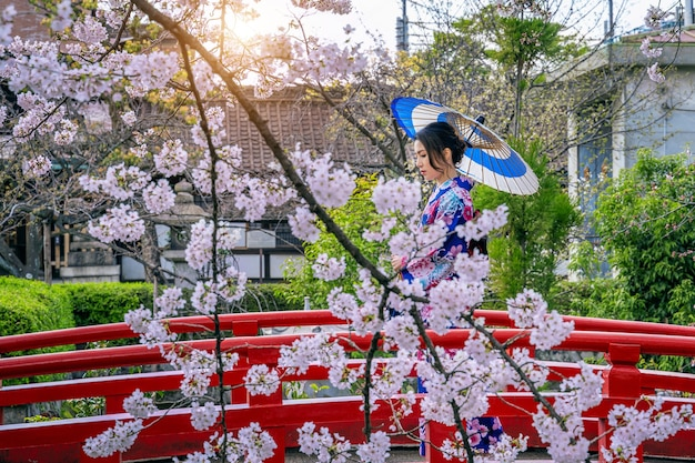 Donna asiatica che indossa kimono tradizionale giapponese e fiori di ciliegio in primavera, tempio di kyoto in giappone. Foto Gratuite