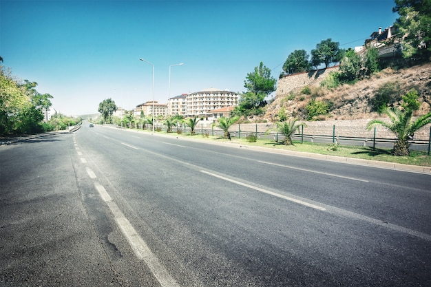Asphalt road surrounded by palm trees Premium Photo