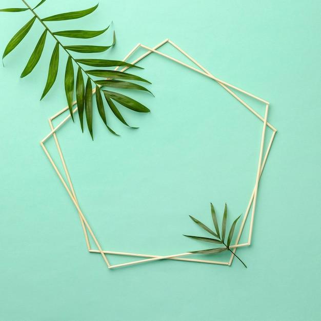 빈 프레임 녹색 잎의 구색 무료 사진