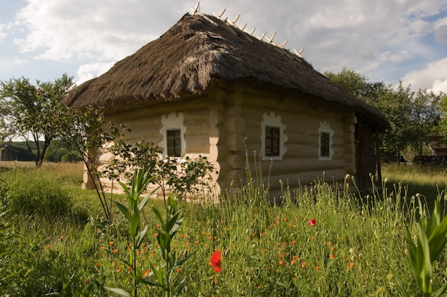 Authentic ukrainian village house. Premium Photo