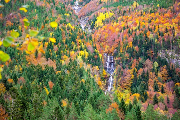 Autumn bujaruelo ordesa waterfal in colorful fall forest huesca Premium Photo