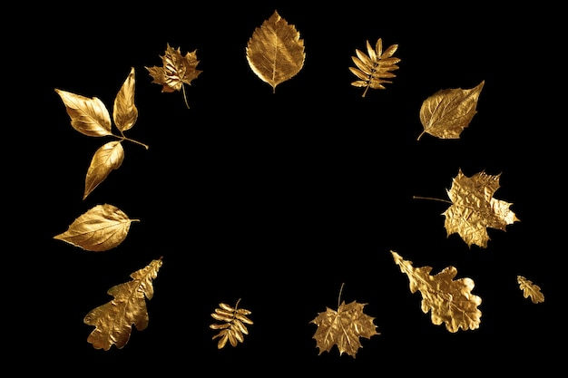 Autumn composition of different golden leaves on a black Premium Photo