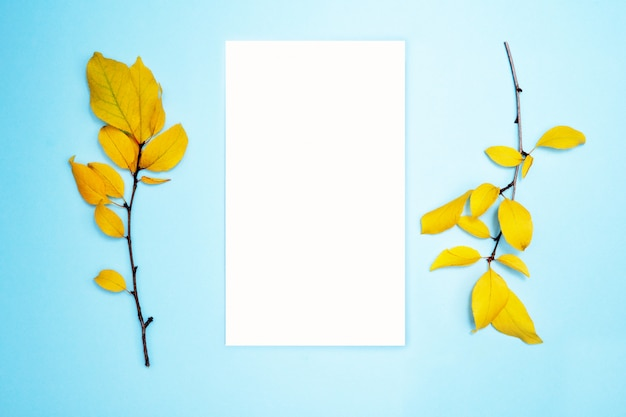 Autumn composition, frame, blank paper. two branches with yellow leaves, plum. flat lay, top view Premium Photo