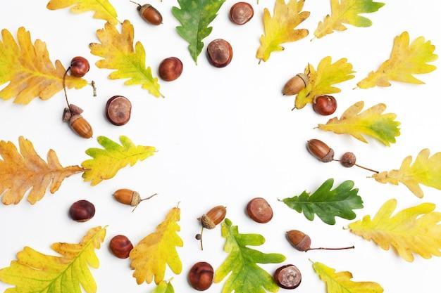 秋の組成物。秋の紅葉と白い背景の松ぼっくりで作られたフレーム。 Premium写真