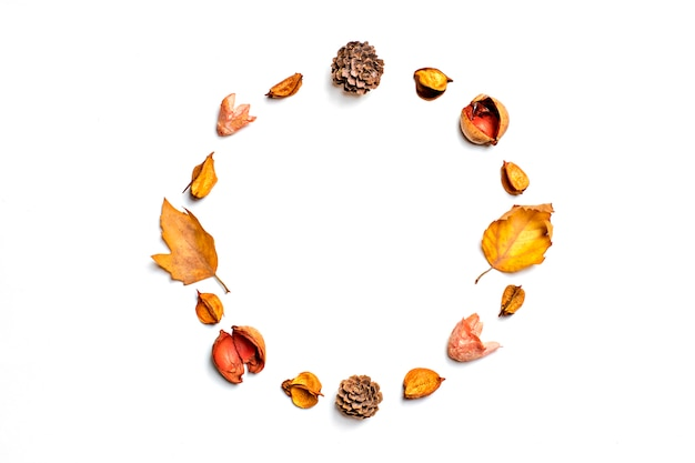 Autumn composition from dried leaf, berries, flower Premium Photo