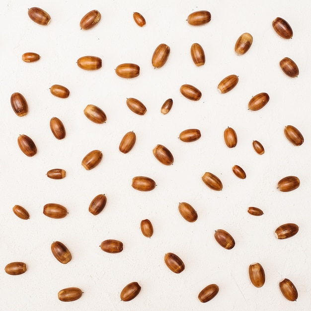 Autumn composition. pattern made of acorn on white background with copy space Premium Photo