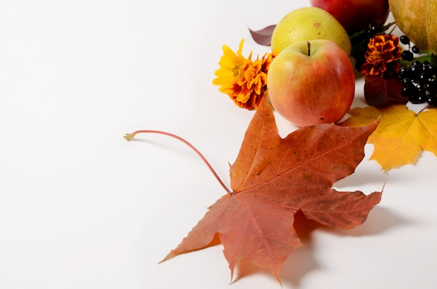 Autumn composition of vegetables and fruits, leaves, apples, pears on a white background. Premium Photo
