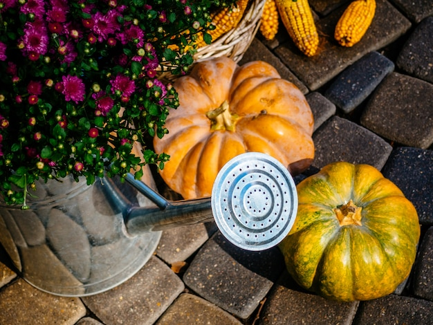 Осенняя композиция с овощами и цветами Premium Фотографии