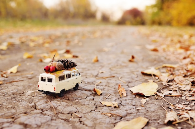 Autumn concept - a toy car driven on the roof of acorns, rowan berries, yellow leaf and a bump Premium Photo